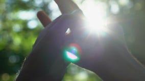 Le couple gai frottant tendrement des mains au soleil, amour vrai, minorité redresse clips vidéos