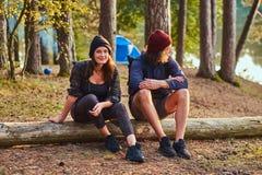 Le couple heureux attrayant d?tend dans la for?t ensoleill?e verte tout en se reposant sur le rondin photographie stock libre de droits