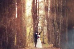 Le couple marche dans la forêt magique Photos stock