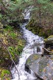 Le courant coulant en bas de la montagne entourée par des roches et automne a coloré des feuilles image stock