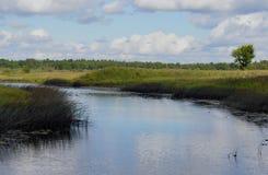 Le courant scénique d'extérieur d'extérieur scénique rural de jour de marais de forêt opacifie le lac bleu d'arbre de vert de res Photo stock