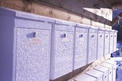 Le courrier gelé enferme dans une boîte la rangée dans la lumière de coucher du soleil photo libre de droits
