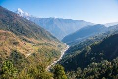 Le cours d'eau de la rivière de la montagne Photo stock