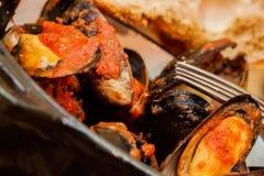 Le cozze cotte a vapore fresche in pomodoro ed erbe sauce, frutti di mare piccanti, fonte ricca di proteina facilmente digeribile Fotografia Stock Libera da Diritti