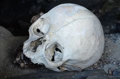 Le crâne dans la tombe de la ville morte, Caucase du nord, Chechenie Image stock