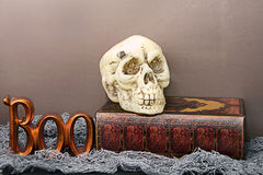 Le crâne de Halloween et huent Photo stock
