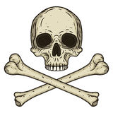 Le crâne humain avec deux a croisé des os d'isolement sur le fond blanc Style dessiné d'illustration de vecteur à disposition Photographie stock