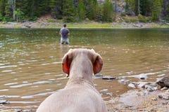 Le crabot observe le pêcheur Image libre de droits