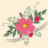 Le crabot rose s'est levé Images libres de droits