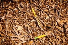 Le crayon est mort image stock
