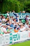 le cricket évente des jeunes Photos libres de droits