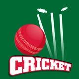Le cricket folâtre le concept avec la boule rouge Photo stock