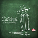 Le cricket folâtre le concept avec le kit de match Photographie stock libre de droits