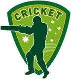 Le cricket folâtre le joueur australie illustration libre de droits
