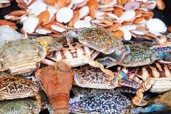 Le crochet des fruits de mer s'?tendent sur le compteur images stock