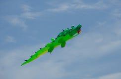 Le crocodile vert volant au-dessus de la plage dans l'océan étaye Image libre de droits