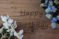 Le crocus et la jacinthe, textotent le joyeux anniversaire Photo stock