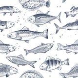 Le croquis pêche le modèle sans couture Fond gravé à l'eau-forte de cru de vecteur d'emballage de poissons d'océan illustration de vecteur