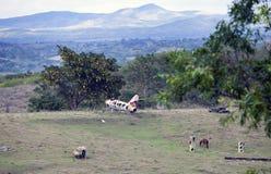 LE CUBA 3 FÉVRIER 2013 : Vieille rouille d'avions de guerre dans le domaine photographie stock