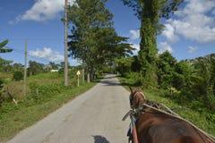 Le CUBA Valle de Viñales dans le del Rio de Piñar Image stock