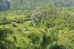 Le CUBA Valle de Viñales dans le del Rio de Piñar Photographie stock libre de droits