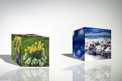le cube 3d opacifie l'illustration bleue de fond de lever de soleil de nature de fleur Images libres de droits