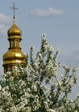 Le cupole dorate famose di Kyiv, Ucraina Fotografia Stock