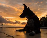 Le Curaçao poursuivent et les vues de coucher du soleil photo libre de droits