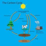 Le cycle de carbone illustration de vecteur