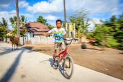 Le cycliste Photo libre de droits