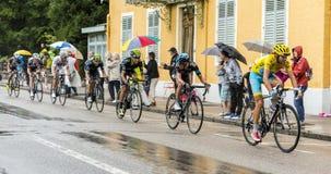 Le débardeur jaune - Vincenzo Nibali Photo libre de droits