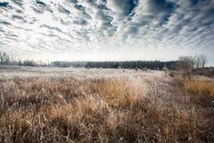 Le début de l'hiver Photographie stock libre de droits