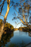 Le début de la matinée de Murray River Images libres de droits