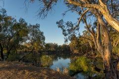 Le début de la matinée de Murray River Images stock