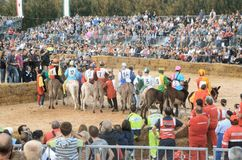 Le début de la truffe juste dans alba (Cuneo), a été tenu pendant plus de 50 années, la course d'âne Photo stock