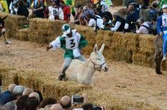 Le début de la truffe juste dans alba (Cuneo), a été tenu pendant plus de 50 années, la course d'âne Photographie stock libre de droits