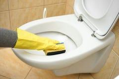 Le décapant femelle professionnel nettoie la toilette dans la salle de bains photo stock