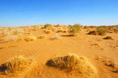 Le désert arénacé Horizontal normal L'Asie centrale uzbekistan images libres de droits