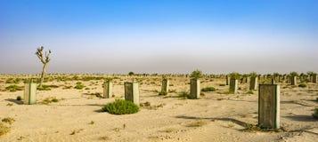 Le désert est le berceau de ` du ` de la vie, émirats, Oct. 2018 images stock