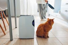 Le déshumidificateur avec l'écran tactile, indicateur d'humidité, lampe UV, ionizer d'air, conteneur de l'eau fonctionne à la mai image stock