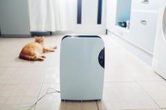 Le déshumidificateur avec l'écran tactile, indicateur d'humidité, lampe UV, ionizer d'air, conteneur de l'eau fonctionne à la mai image libre de droits