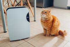 Le déshumidificateur avec l'écran tactile, indicateur d'humidité, lampe UV, ionizer d'air, conteneur de l'eau fonctionne à la mai photo stock
