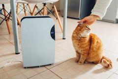 Le déshumidificateur avec l'écran tactile, indicateur d'humidité, lampe UV, ionizer d'air, conteneur de l'eau fonctionne à la mai photo libre de droits