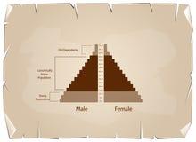 Le détail des graphiques de pyramides de population dépendent de l'âge Photographie stock libre de droits