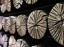 Le détail du charbon de bois Photos stock