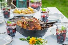 Le dîner fait maison avec des pommes de terre et le poulet ont servi dans la campagne Images stock