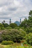 Le dôme et les minarets de la mosquée de cathédrale de St Petersburg St Petersburg Russie images stock