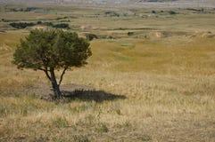 Le Dakota du Sud Images libres de droits