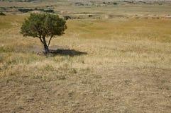 Le Dakota du Sud Photo libre de droits