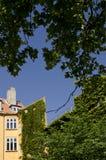 Le Danemark - Copenhague - construction sous les arbres Photos stock